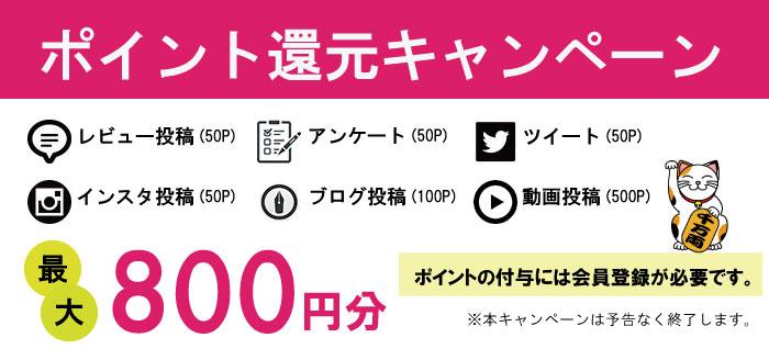 ポイント還元キャンペーン ブログ掲載、レビュー投稿、ツイート、設置写真送付で最大2,000円分ポイント還元